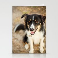 border collie Stationery Cards featuring Border Collie by Paw Prints By Jamie