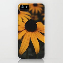 tiny sunshine iPhone Case
