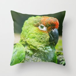 Nanday Parakeet Throw Pillow