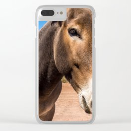 Approach of a donkey in its natural habitat Clear iPhone Case