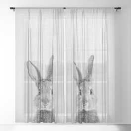 Rabbit - Black & White Sheer Curtain
