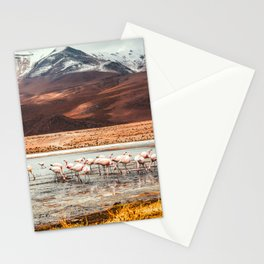 Flamingo Lake, Bolivia #society6 #buyart #homedecor Stationery Cards