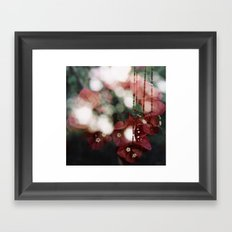 bouganvillea II Framed Art Print