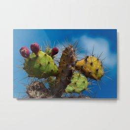 Cactus bites the sky Metal Print