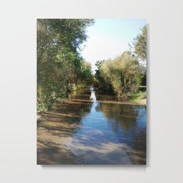 Copeland Creek 2 2012-11-28 Metal Print