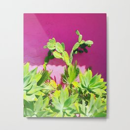 Plants on Pink Metal Print