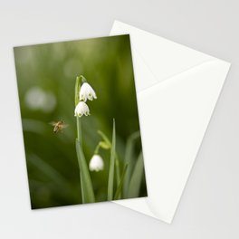 Hovering Stationery Cards