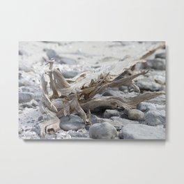 Driftwood and Beach Rocks Metal Print
