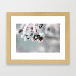 Iced Berries Framed Art Print