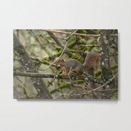 Leafy Mouthful Metal Print
