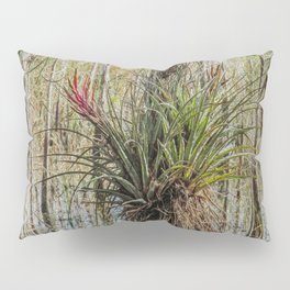 Unexpected Beauty Pillow Sham