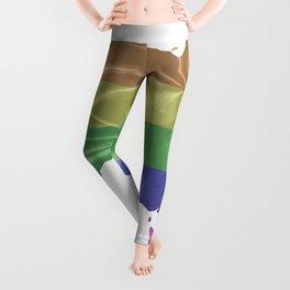 Australia Gay Pride Flag Leggings