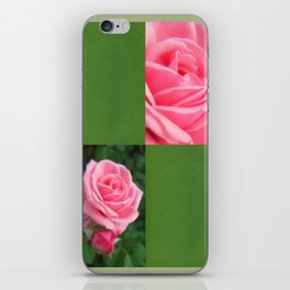 Pink Roses in Anzures 2 Blank Q5F0 iPhone Skin