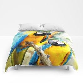 Macaw friends Comforters