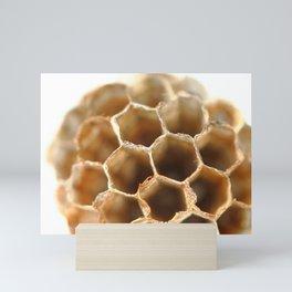 Honeycomb vespiary on white Mini Art Print