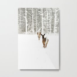 Doe In Winter Metal Print