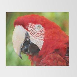 Catalina Macaw Throw Blanket