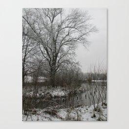 Light Dusting Canvas Print