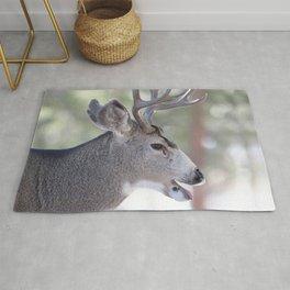 Watercolor Deer, Mule 03, RMNP, That's a Good One Rug