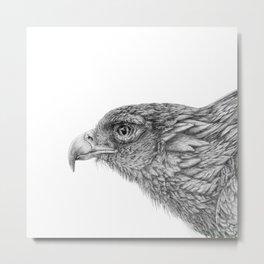 Eagle_Graphite by Pia Tham Metal Print