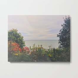 Summer Lake Metal Print