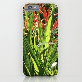 Firecracker Red Flowers Nestled In Lavish Leaves iPhone Case