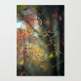Dusk Bloom Canvas Print