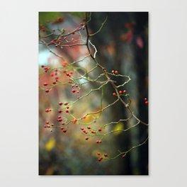 Dusk Bloom Canvas Print