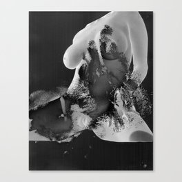 Spread Canvas Print