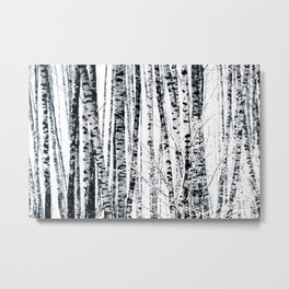 Birch Trees In Winter Metal Print
