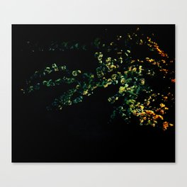 abstract flower bouquet in the moonlight Canvas Print