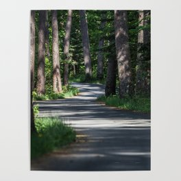 Itasca's Winding Road Poster