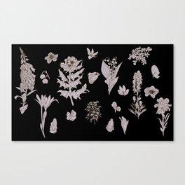 Witches Brew (dark) Canvas Print
