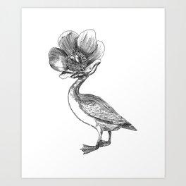 Pato cabeza de flor / Duck with flower head Art Print