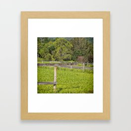 Broken fence in a rural area Framed Art Print