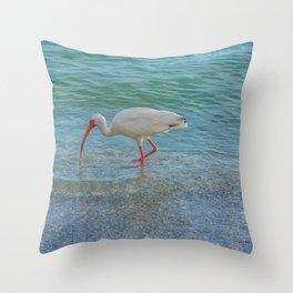 Waterbird on the Beach Throw Pillow