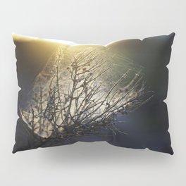 Creeping Sun Rise Pillow Sham