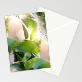 Bamboo Lights Stationery Cards