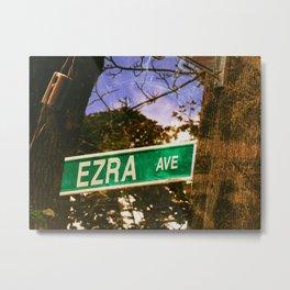 Ezra Metal Print