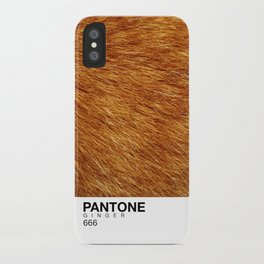 Pantone Ginger iPhone Case
