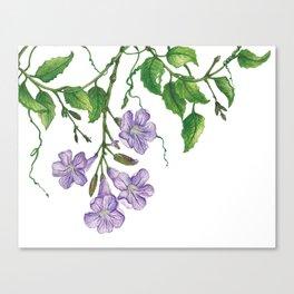 Trumpet blooms Canvas Print