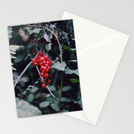 Wild berries in the forest Stationery Cards