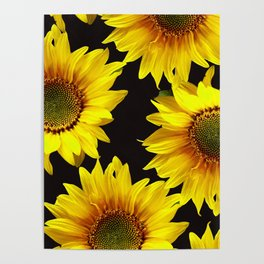 Large Sunflowers on a black background - #Society6 #buyart Poster