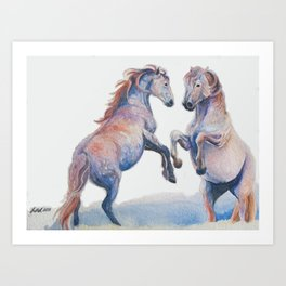 Fighting Stallions Wild Horse Art Print