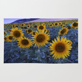 Sunflowers At Blue Hour . Square Rug
