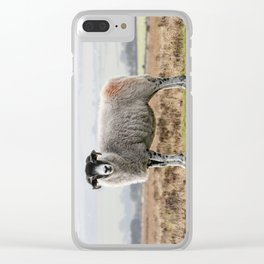 Sheep Clear iPhone Case