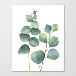 Watercolor eucalyptus branches Leinwanddruck