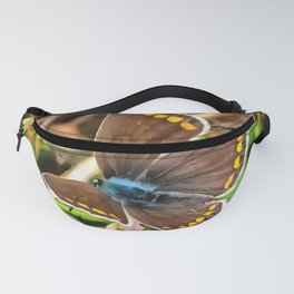 Common Blue Butterfly Polyommatus Icarus Fanny Pack
