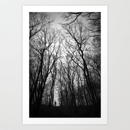 In branches Art Print