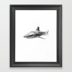 Shark I Framed Art Print